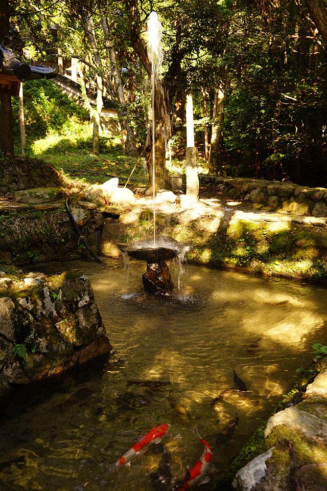 永光寺の池